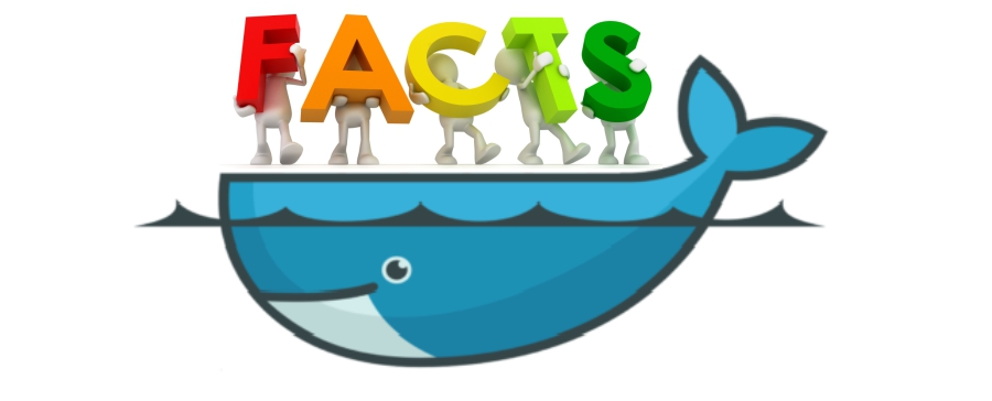 Interesting facts - Companies and the use of Docker Article