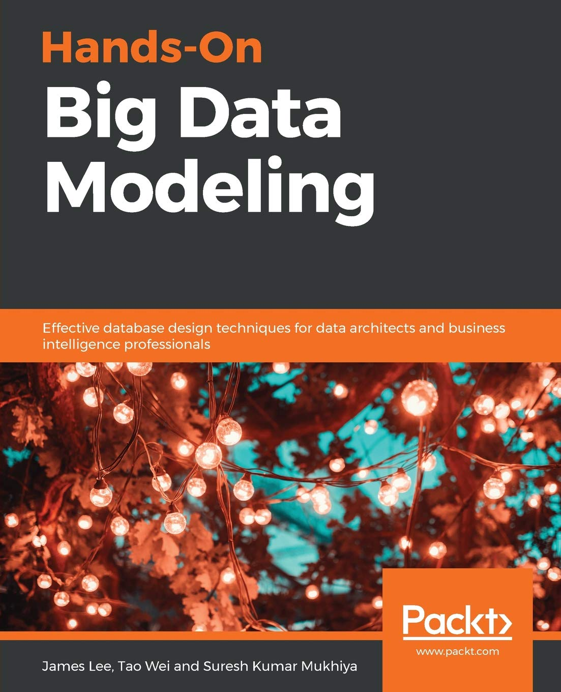 Hands-On Big Data Modeling